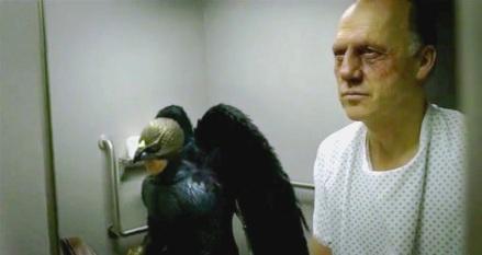 birdman (11)b